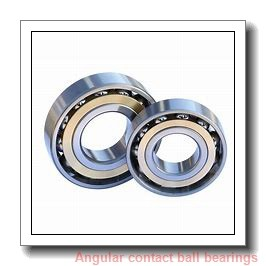 INA 3201J2RS Angular Contact Bearings
